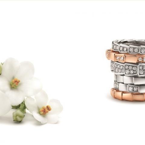 الحب يقول نعم مع مجموعة مجوهرات بولغاري الجديدة!