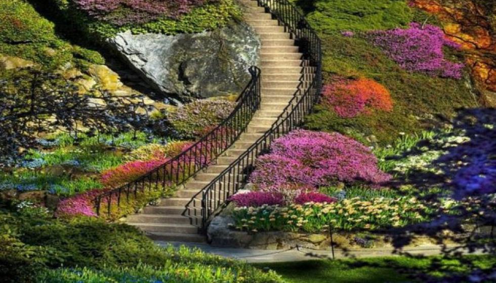 بالصور: نزهة في حدائق بوتشارت الكندية الخلابة