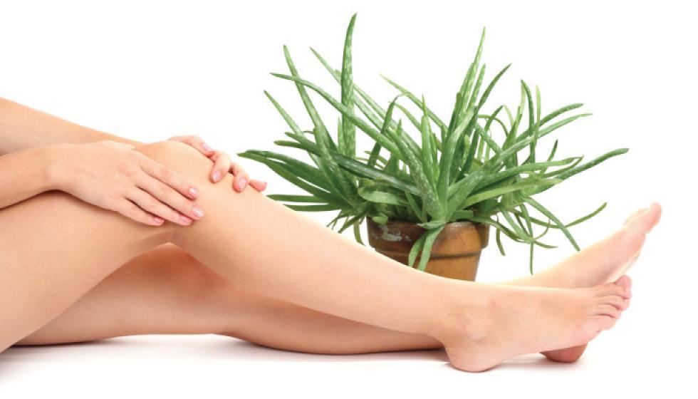 نصائح للحؤول دون نمو الشعر تحت الجلد