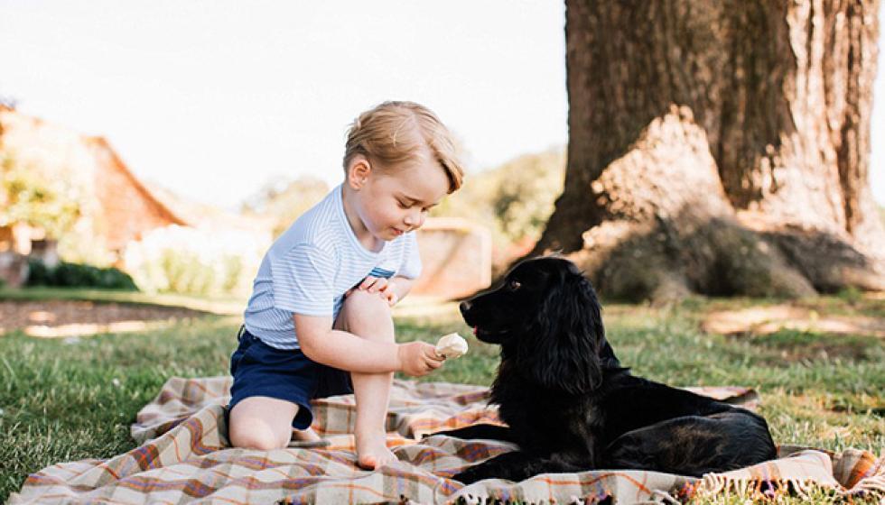 السنة الثالثة على الأمير الصغير!