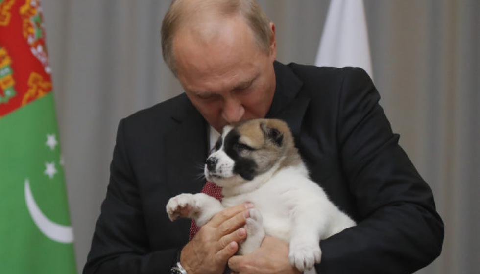 جرو كلب هدية للرئيس الروسي في عيد ميلاده